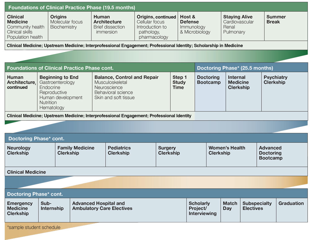 Curriculum Flow Chart