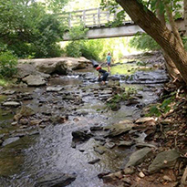 Child playing in creek