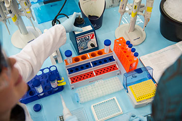 photo of a student in a lab