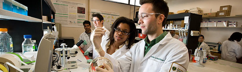 photo of students in a research lab