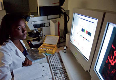 Photo - Student Chioma Anokwute analyzes pathology samples while conducting diabetes research in the lab of faculty mentor Khalid Elased, R.Ph., Ph.D. Anokwute hopes to become a cardiothoracic surgeon, and based on her STREAMS experience, the Boonshoft School of Medicine will be one of her top choices for medical school.